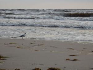 Prora - pláž