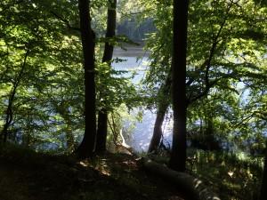 Přírodní park Jasmund